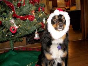 Me and my Santa hat
