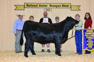 B&O Black Female- Champ - Tanner Miller