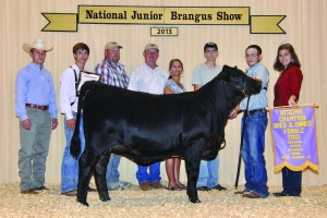 B&O Black Female- Res Champ - Luke Johnston