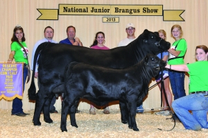 Futurity Black CC- Res Champ - Ellie Jorgenson