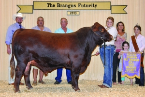 Futurity Red Bull- Res Champ - Atkinson