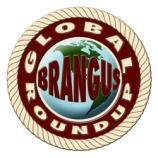 Global Roundup logo_72